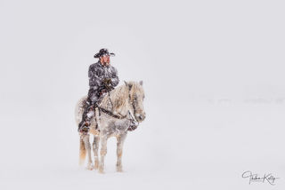 cowboy, snow horse, contemplation