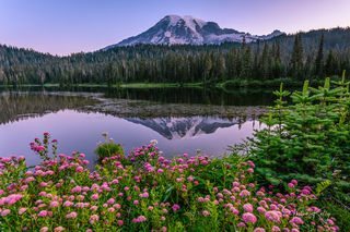 Mt. Rainer National Park, Reflection Lake, national park, wildflowers, summer wildflowers, reflection