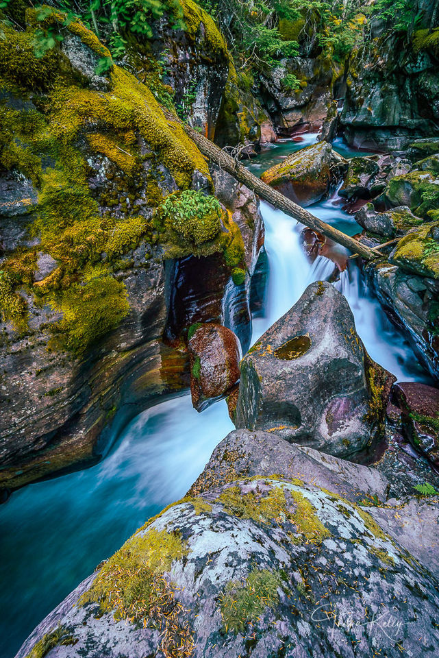Avalanche Creek II print