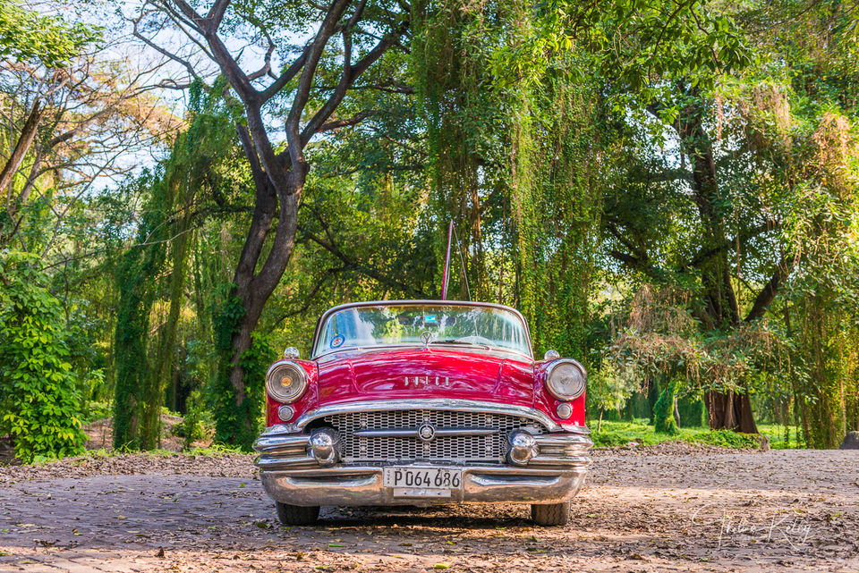 Buick In The Park print