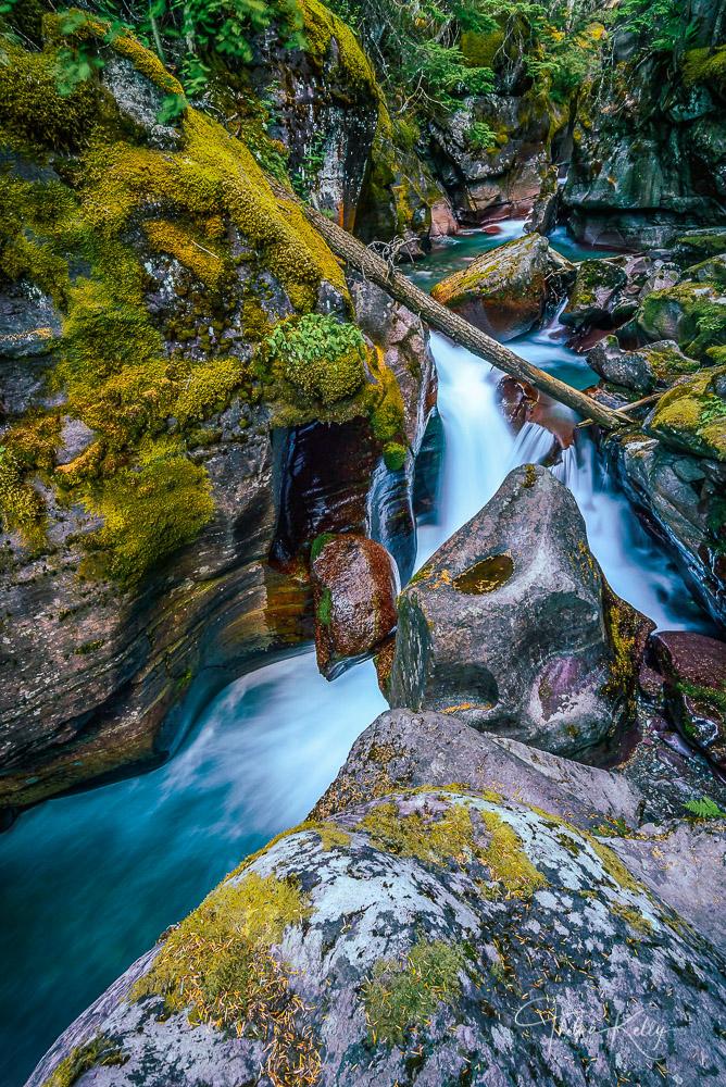 Avalanche Creek, Glacier National Park,, photo