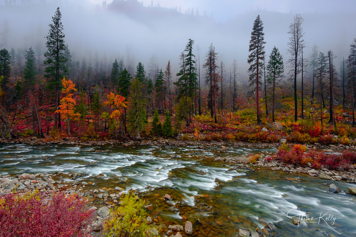 fall color, Wenatchee River, photo