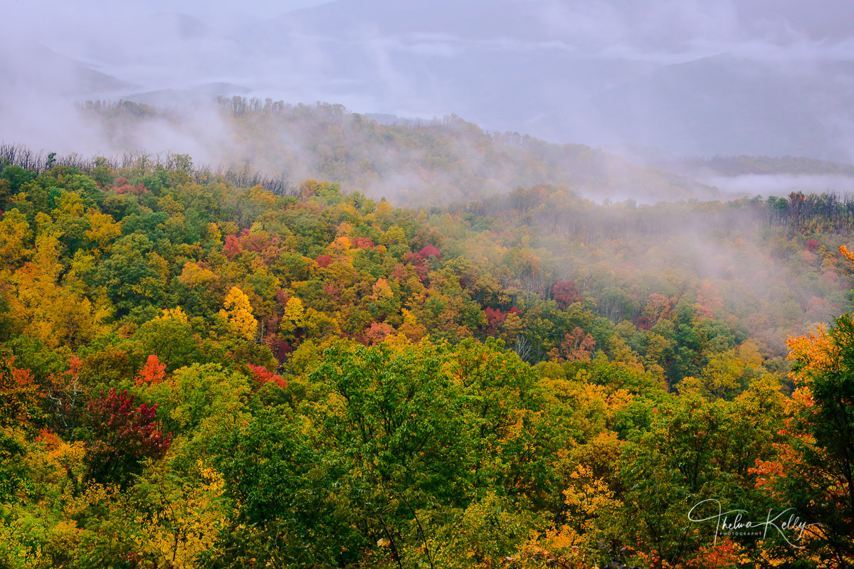 Great Smoky Mountain National Park, mountains, misty landscapes, mist, fall, fall color, autumn, photo