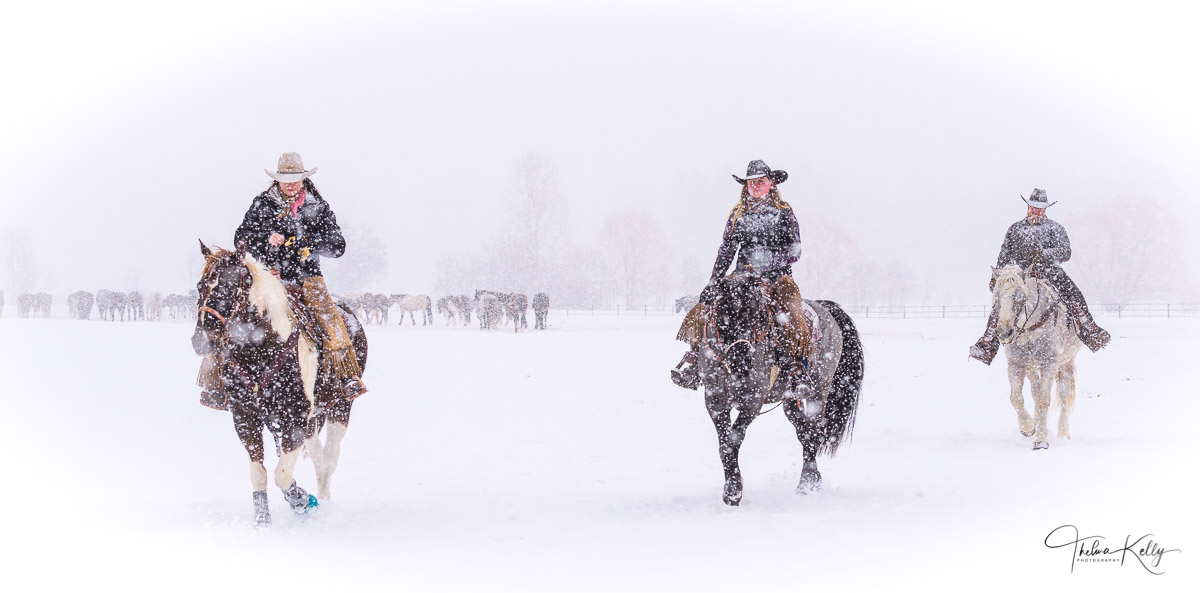 cowboy buddies, snow, horses, photo
