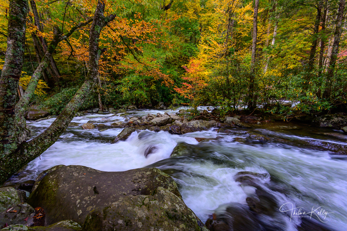 Great Smoky Mountain National Park, The Smokies, National Park, Rivers, Fall Color, Autumn, Autumn Colors, Landscape Photography, photo